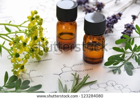 natural apothecary - stock photo