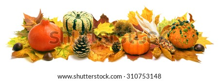 Natural autumn decoration arranged with dry leaves, ornamental pumpkins, cones and more, studio isolated on white, wide format - stock photo
