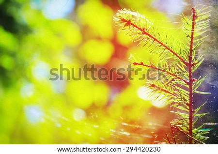 natural background on grunge vintage paper texture - stock photo