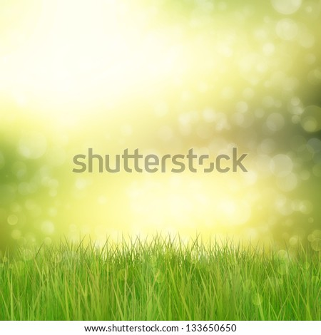 Natural background with 3d green grass and bokeh lights.