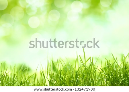 Natural backgrounds with green grass