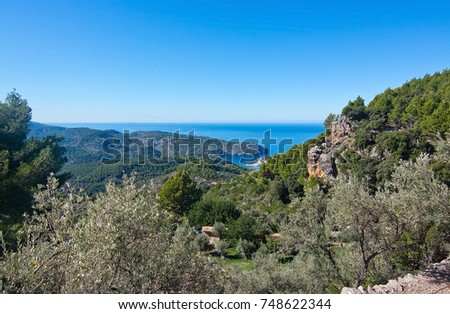 Natural beautiful landscape in October in Mallorca, Spain.