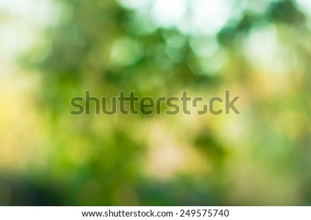 Natural Bokeh,blurred bokeh - stock photo