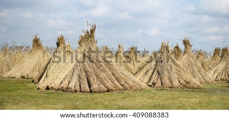 Natural building material - reed banner