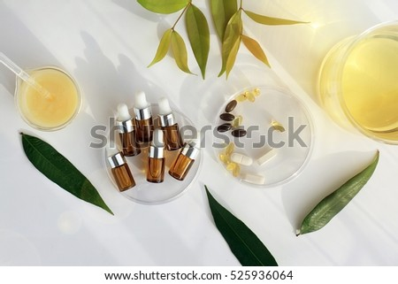 Natural essential oil, Cosmetic bottle containers with green herbal leaves, Blank label for branding mock-up, Natural beauty product concept.