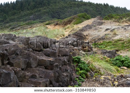 natural feature in the central Oregon coast where lava rock filled cracks and solidified separating the earth - stock photo