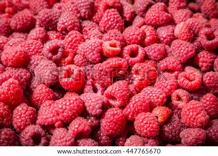 natural food background with ripe raspberry, close up - stock photo
