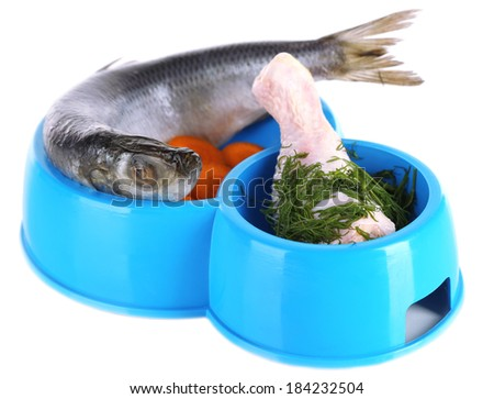 Natural food for pets in plastic bowls isolated on white - stock photo