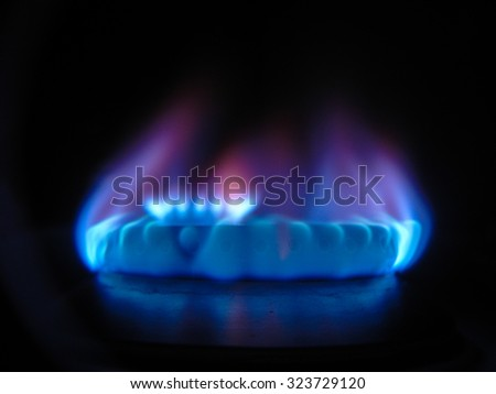 Natural gas burns on the kitchen stove, close up photo with shallow DOF - stock photo