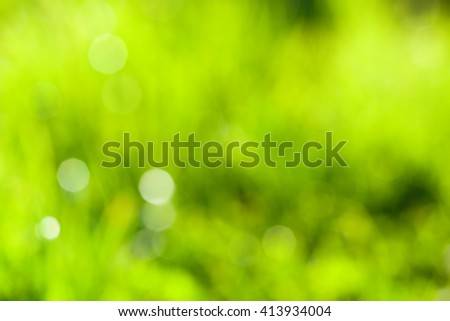 Natural grass bokeh, abstract green nature background, nobody