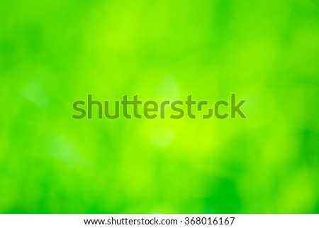 Natural grass green blurred background.