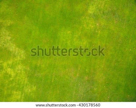 Natural grass texture, Aerial view of park - stock photo