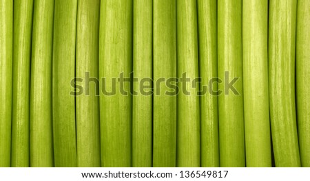 Natural Green Background / Green background made from organic material - cut flowers