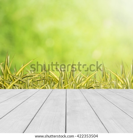Natural green background. Leaf against bokeh background with wood floor. - stock photo