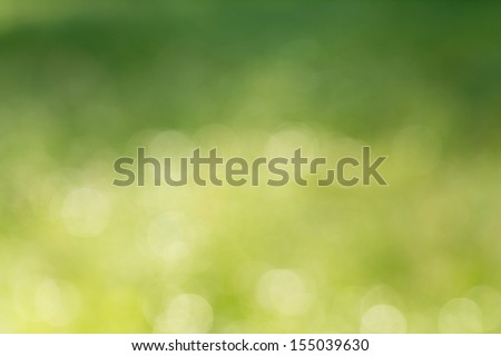 Natural green blurred background. - stock photo