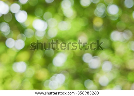 Natural green blurred background - stock photo