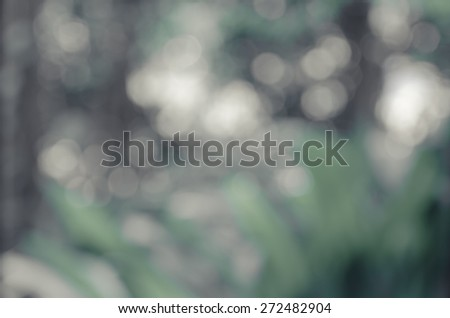 Natural green blurred background. Defocused green abstract background. - stock photo