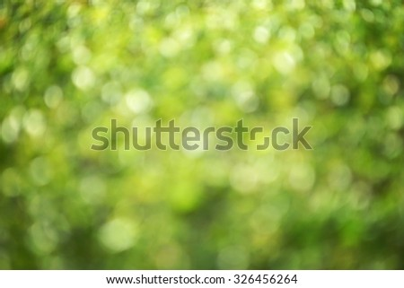 natural green blurred background with bokeh effect              - stock photo