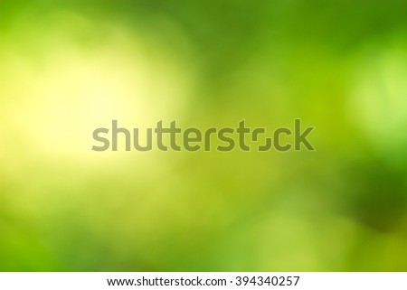 natural green blurred backgrounds / Green background