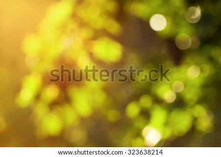 Natural green bright blur background. Abstract texture.  - stock photo