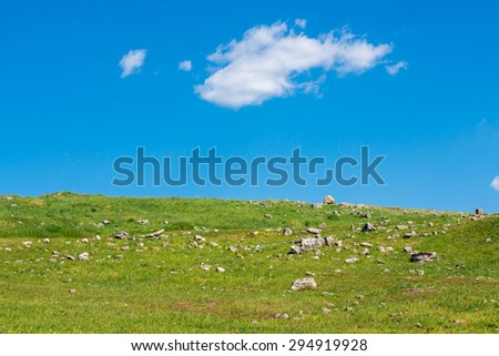 Natural green field with clear sky  - stock photo