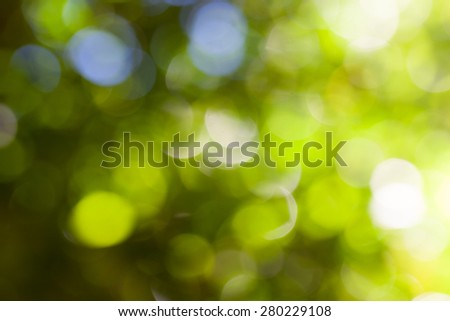 natural green forest bokeh background - stock photo