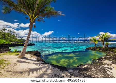 Natural infinity rock pool with palm trees over tropical ocean lagoon
