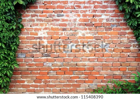 Natural ivy frame on an old brick wall. Copy space. - stock photo