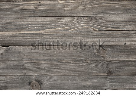 Natural knotted gray weathered wood plank texture background.  - stock photo