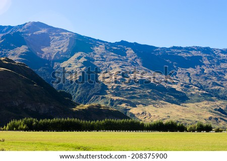 Natural landscape of New Zealand alps and meadow - stock photo