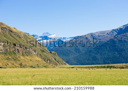 Natural landscape of New Zealand alps and meadows - stock photo