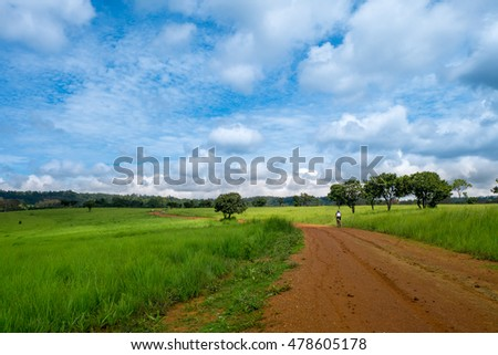 Natural meadow green sky beautiful afternoon in Thailand.