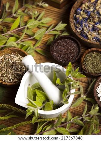 Natural medicine, herbs - stock photo
