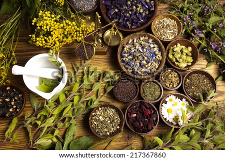 Natural medicine, herbs - stock photo