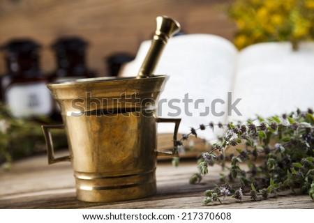 Natural medicine, herbs, mortar - stock photo