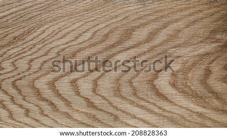natural oak high detailed texture, for background