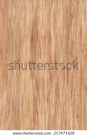Natural Oak Wood Ocher bleached, stained, grunge texture sample. - stock photo