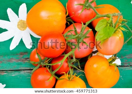 natural, organic tomatoes on a wooden background