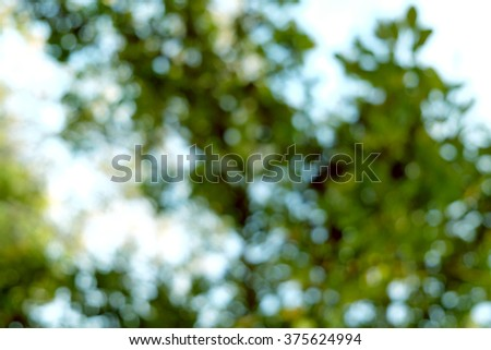 Natural outdoors bokeh abstract background - stock photo