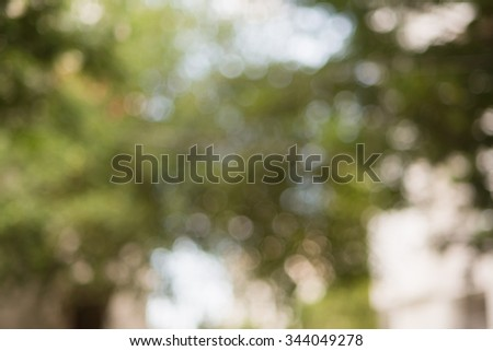 Natural outdoors bokeh in green and yellow tones - stock photo