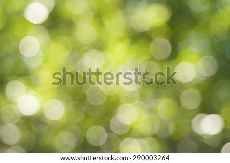 Natural outdoors bokeh  in green and yellow tones, summer seasonal background - stock photo