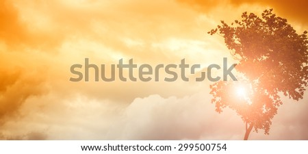 Natural panoramic background of cloudy orange and yellow sky with cumulus in windy sunny weather and one tree with leaves on wind copyspace, horizontal picture - stock photo