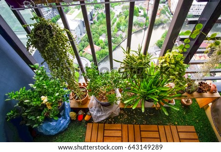 Natural Plants Hanging Pots Balcony Garden Stock Photo Edit Now