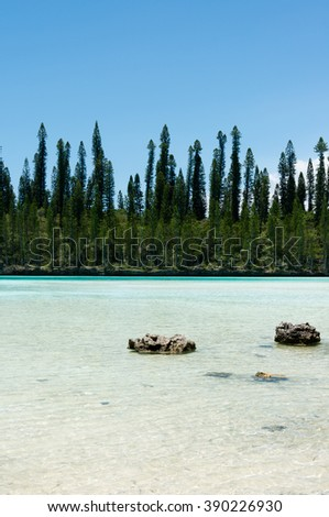 Natural Pool on the Isle of Pines in New Caledonia - stock photo