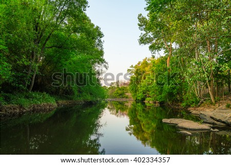 natural river stream in the forest (dry season) at countryside thailand