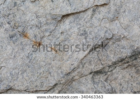 Natural sand stone texture and seamless background