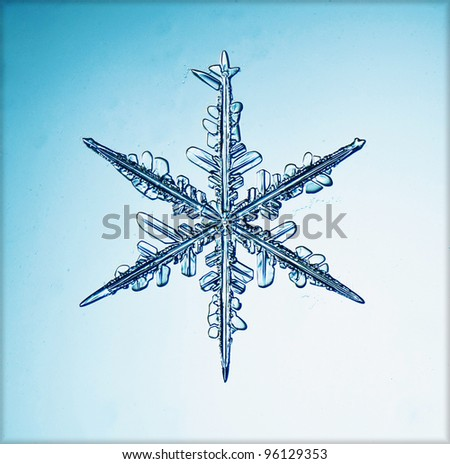 natural snowflake macro - stock photo