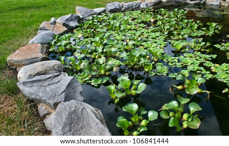 Natural stone pond with water plants - stock photo