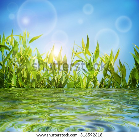 Natural summer background with green lush grass, blue sky and crystal clear water - stock photo