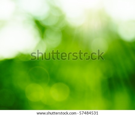 Natural Summer Forest Bokeh With Sun Rays. Blurred ecology background. - stock photo